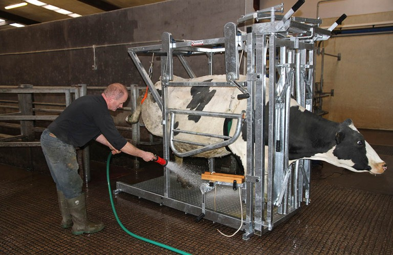 Nugent universal hoof tech 6 Wexford Carlow and Wicklow