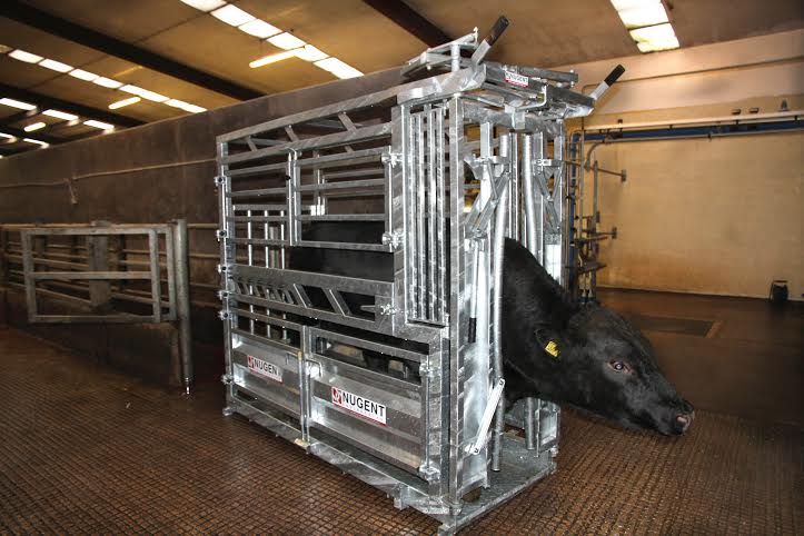 UNIVERSAL CATTLE TECH Wexford Carlow and Wicklow