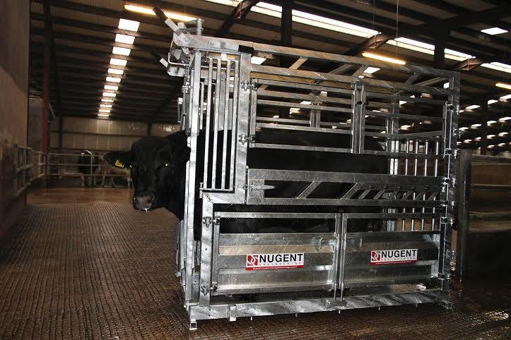 universal cattle tech 2 Wexford Carlow and Wicklow